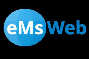 eMsWeb Websitebouw - logo